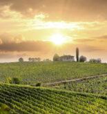 Toscana val dorcia BikeTv